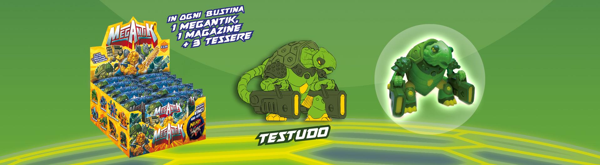 TESTUDO1
